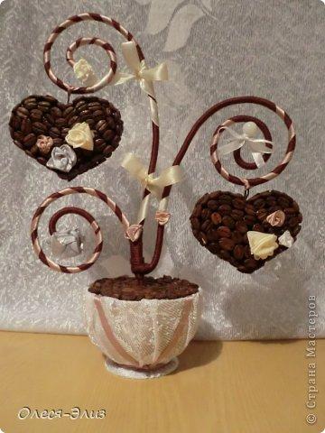 Дерево топиарий из кофейных зерен своими руками