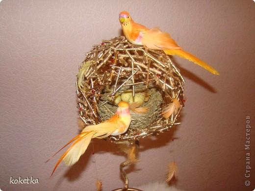 Как сделать гнездо птицы своими руками 31