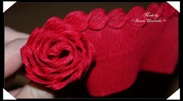 Цветы розы из гофрированной бумаги своими руками