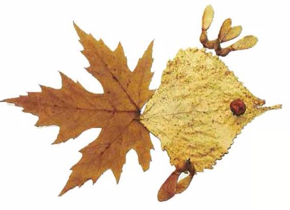 Поделки из листьев деревьев для 1 класса